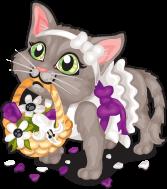 Flower girl kitten single