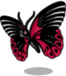 Ruby wing butterfly single