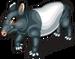 Malayan tapir single