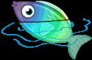 Rainbow fish static