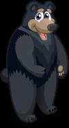 Black bear single