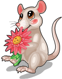 Daisy mouse static