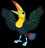 Keel billed toucan an