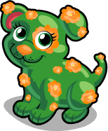 Chrysanthe-pup single