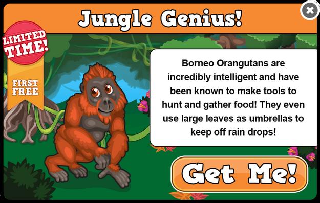 Borneo orangutan modal