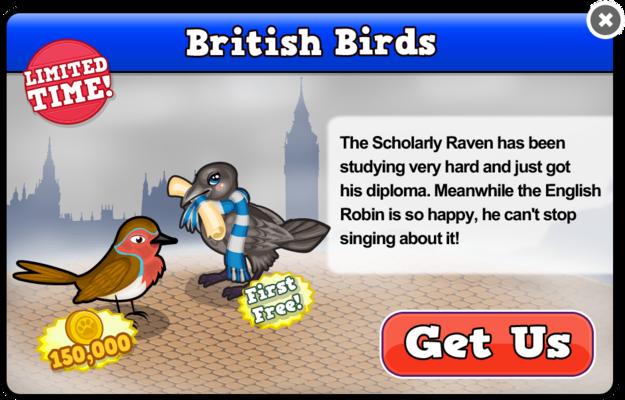 English robin modal
