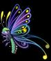 Moonlight butterfly single