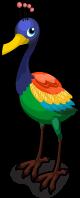 Rainbow Bird single