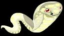 Albino cobra an