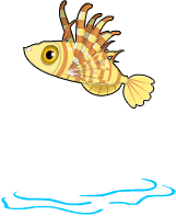 Fuzzy yellow lionfish an
