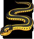 Mexican garter snake static