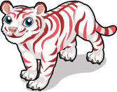 Peppermint tiger single
