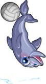 Volleyball dolphin an