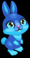 Cubby bunny indigo single