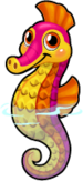 Pygmy seahorse single
