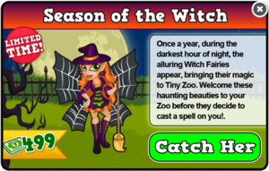 Witch fairy modal