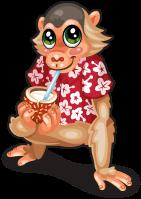 Luau monkey single
