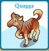 Quagga card