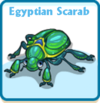 Egyptian scarab card