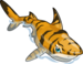 Tiger Shark single