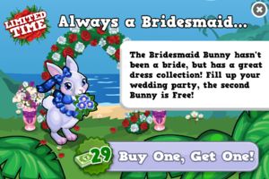 Bridesmaid bunny modal