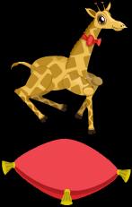 Petite giraffe an