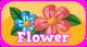 Cubby Flower