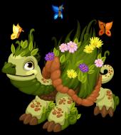 Earth turtle single