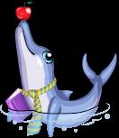 Teacher dolphin static
