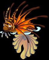 Zebra lionfish single