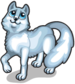 Arctic fox new single