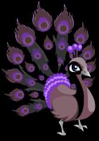 Black peacock single