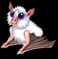 Honduran white bat new static