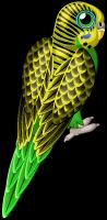 Green parakeet single