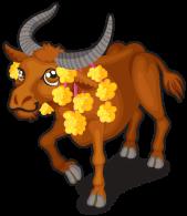 Thai buffalo single