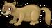 Forest polecat single