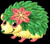 Gracidea hedgehog single