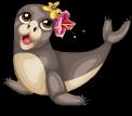 Luau monk seal static