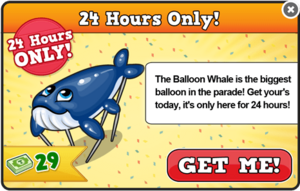 Balloon whale modal