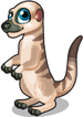 Serengeti meerkat single