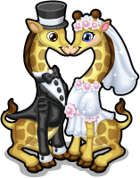 Just married giraffes single