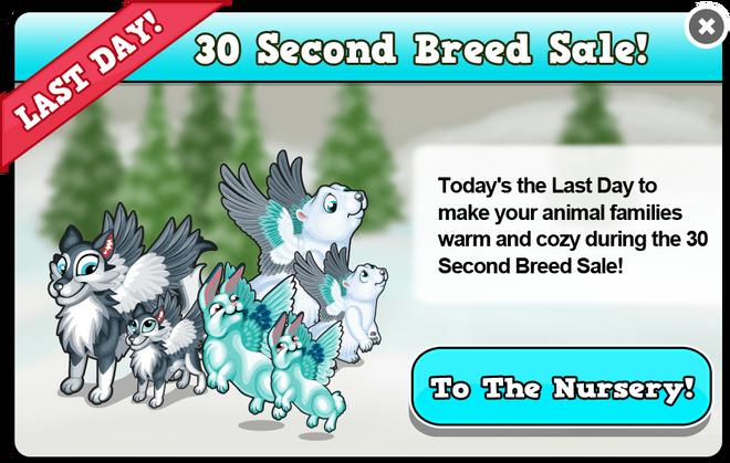 Winter 30 second breed last modal