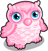 Cotton candy owl single
