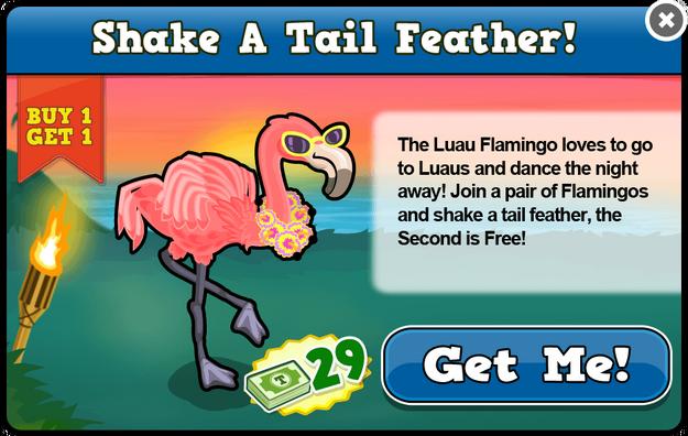 Luau flamingo modal