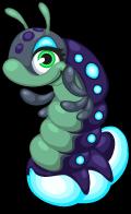 Glow worm single