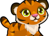 Cubby Tiger