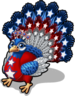 Patriotic peacock single