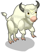 Albino bison an