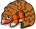 Pangolin single