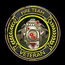 Fireteam Veteran